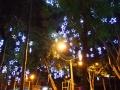 luz-de-navidad-3